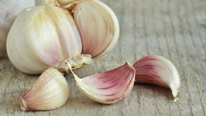 Eating garlic on an empty stomach in the morning can benefit the body's health in many way