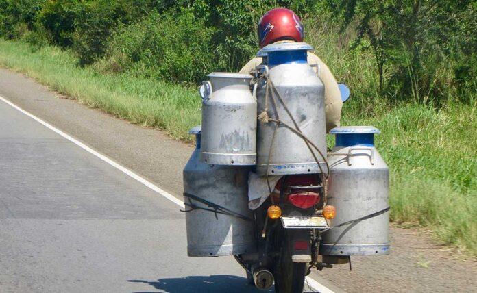 Liquor supply in Milk Containers in Delhi