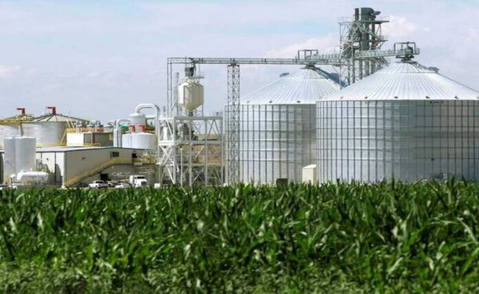 78,000 tonnes of FCI rice to be used for ethanol production this year