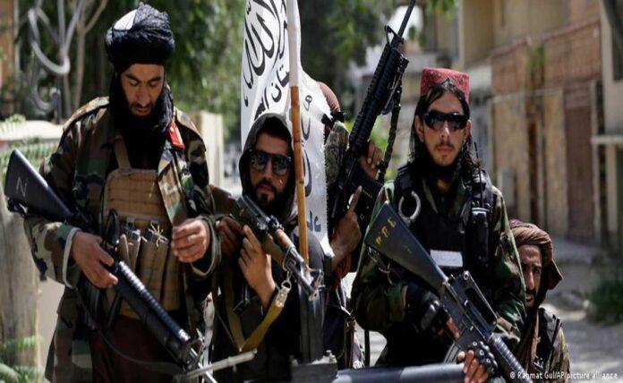 Taliban killed relative of Deutsche Welle journalist